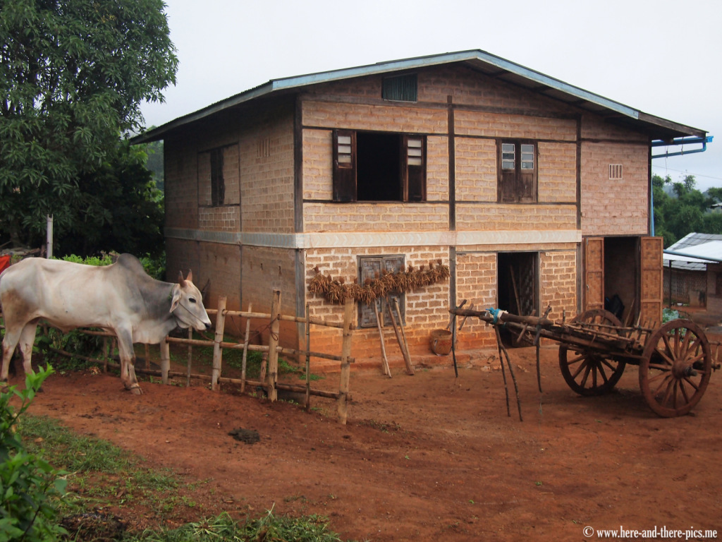 Typical house of a farmer in a small Danu village