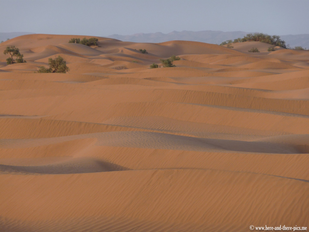 South of Mhamid, Morocco