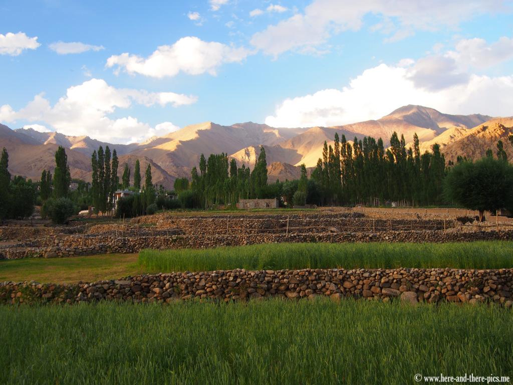 Zankar in Leh